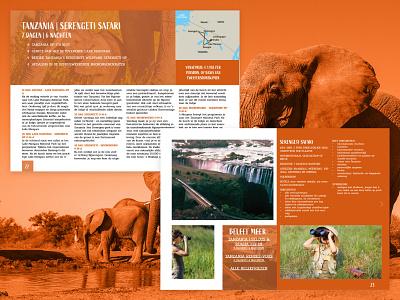 Safari brochure brochure design safari brochure branding design