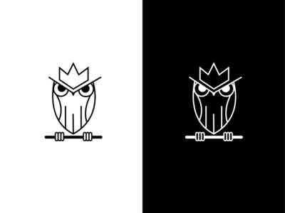 Owl logo design concept