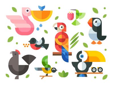 Magic birds pelican parrots birds hummingbirds bullfinch sparrow toucan chicken air fly flat geometric