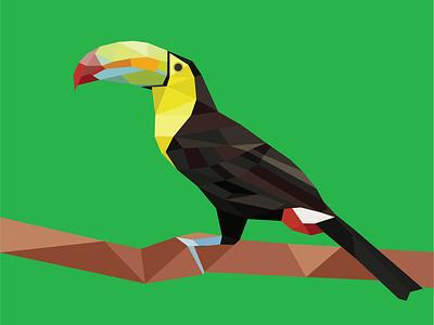 Geometric Toucan geometric illustrator rainforest art polygonal polygon poly tropical bird toucan vector illustration