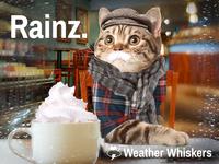 Rainz. No thx.