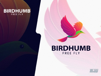 BirdHumb vector hummingbird bird illustration gradient design design logotype logoanimal branding graphicdesign logo