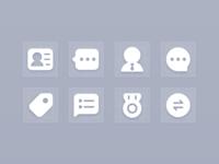 Icon Sky grey