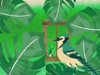 Bird and chameleon