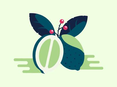 Lime juice lime fruit gren leaf eplant illustration package graphic design berry