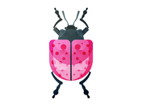 The Bug Project.