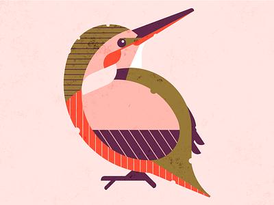 Kingfisher kingfisher style exploring bird animal nature inspration colors retro illustration design