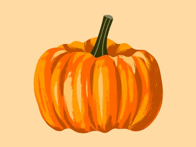 National Pumpkin Day food brushes texture illustration vector orange autumn pumpkin october fall halloween