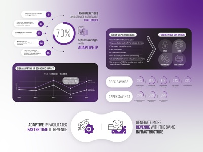CIENNA - ACG Research networks illustration iconography infographic design corporate infographics