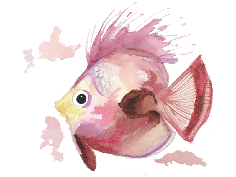 Fish Illustration print watercolor illustration