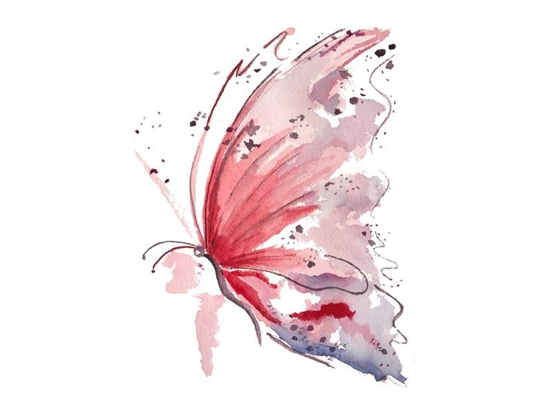 Butterfly print art watercolor illustration
