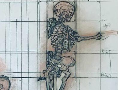 Drawing 2 Midterm: Skeleton