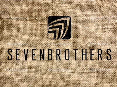 SEVENBROTHERS logo brand identity typography surf icon
