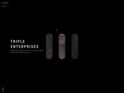 Triple Enterprises Rebound completed rebound interaction design web design website development