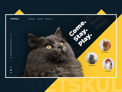 8. Petskul pet care black yellow pet animal wed design web ui ux illustration design