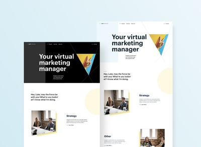 Early Concept For Marketing Website Project