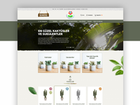 Cactuses & Succulentes E-Commerce Flower Shop