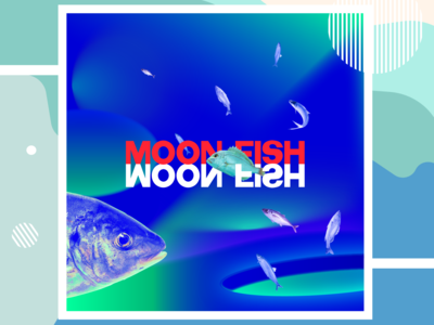 Social Media for a fish store.