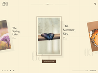 Practice Shot #5 - Butterfly Design Concept
