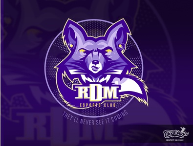 RDM CONCEPT 1 cartoon sports graphic creative drawing illustration logo vector design chipdavid dogwings