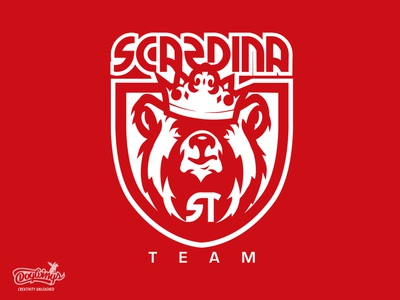 SCARDINA team concept bear crown creative sports graphic branding drawing illustration vector logo design chipdavid dogwings