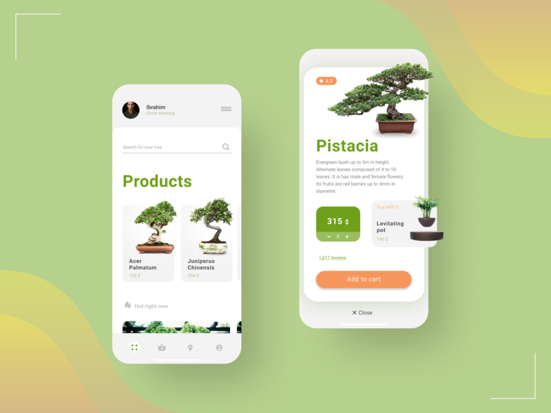 Bonsai UI app