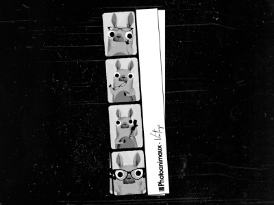 Photoanimaux vintage noise texture cute animal animals vintage design photograph vector black  white character illustration