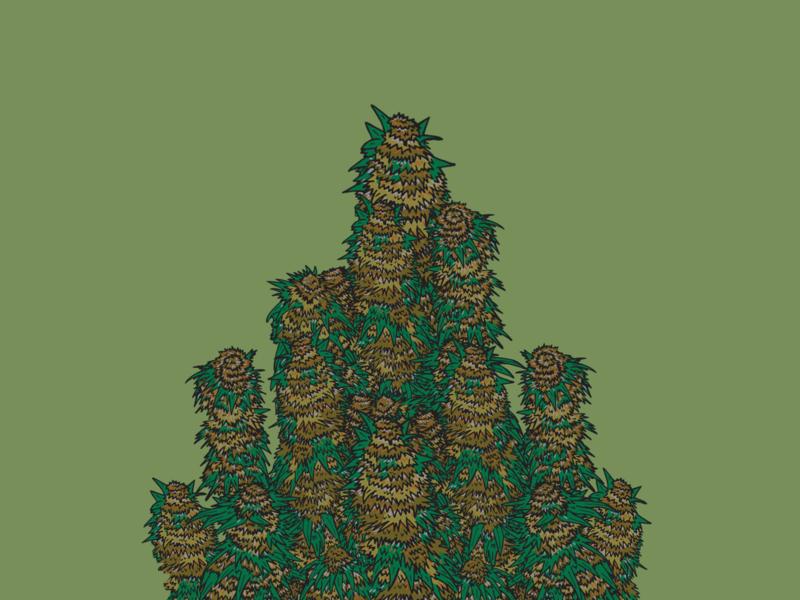 Marijuana Plant Illustration drawing illustration ai vector design