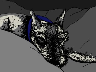 Zipper The Dog zipper dog drawing illustration ai vector design