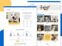 Los Angeles Animal Services Website Re-Design