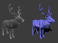 Deer 3D Wireframe