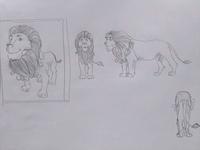 Lion Concept Sketch