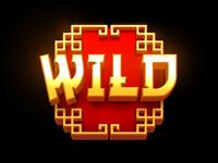 Slot Symbol Wild