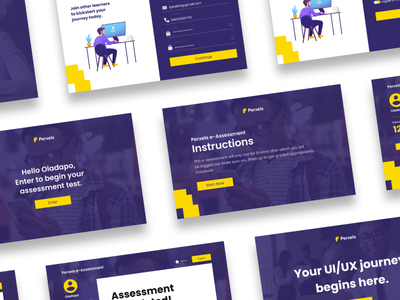 assessment page for Perxels website minimal web ux illustration ui design branding