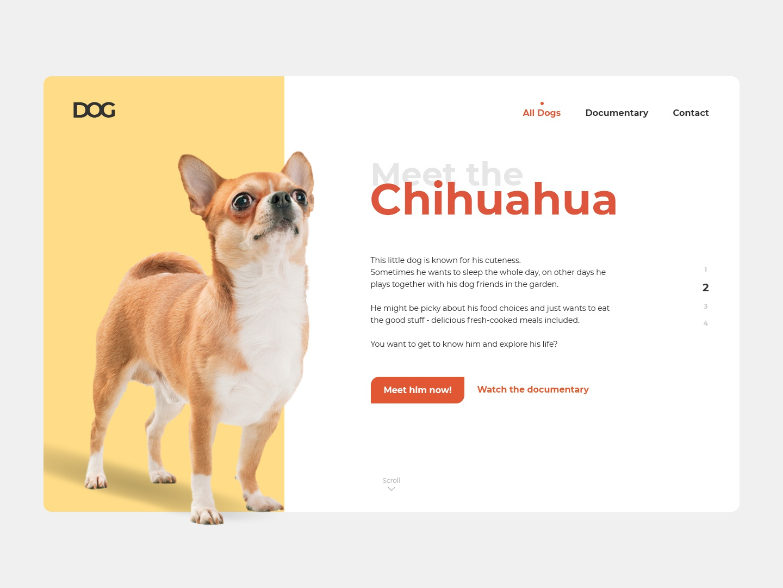"""DOGS"" Website - Chihuahua Header header hero webdesign chihuahua simple design website"