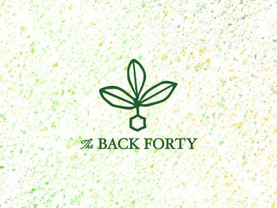 Back40 Logo Concept