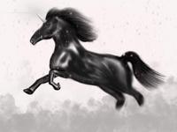 Unicorn Digital Art    iPad Pro   Apple Pencil