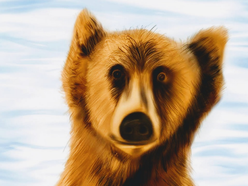 Bear - Close up digital art ipad pro procreate