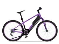 Electric mounten bike , E bike