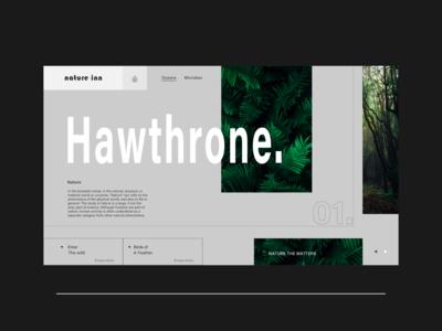 Nature Inn Conceptual web landing page