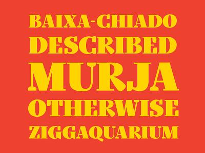 CAPS lettering vector identity red flat branding serif typography design digital font type