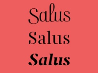 Salus typography branding digital fancy stencil script graphic design logotype type vector logo