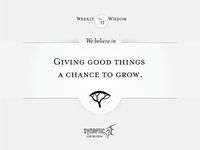 Wisdom on Wednesday #11