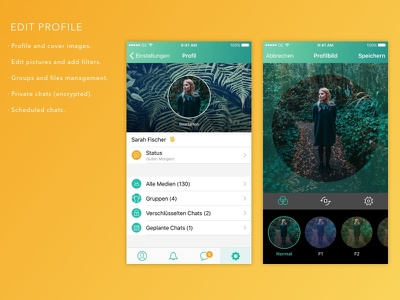 WhatsApp Profile Feature interface design redesign concept whatsapp ui app mobile