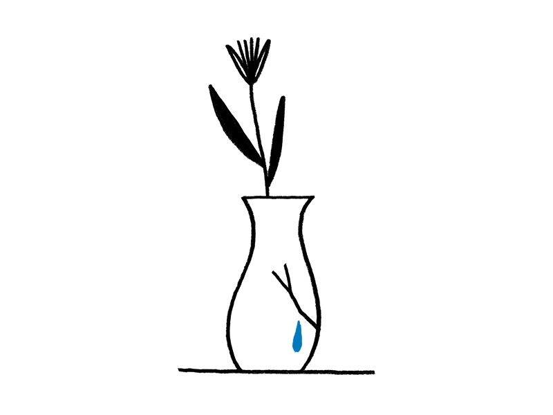 Tender Zine Broken Vase By Erin Mcphee Dribbble