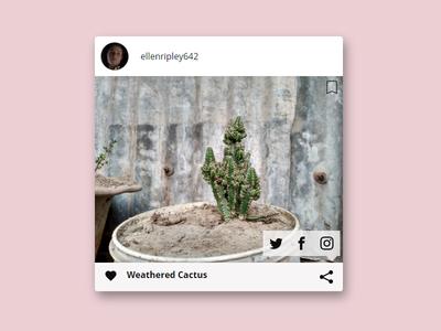 Daily UI #10 - Social Share photo app share daily ui