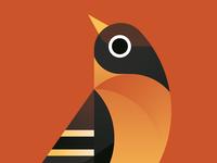 Birds of Autumn