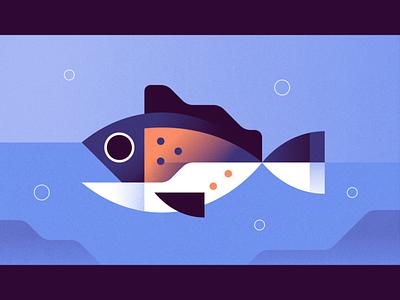 Fish summer aquatic swim sealife animal ocean fish illustration