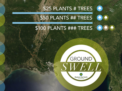 Groundswell Concept: Promo