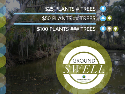 Groundswell Concept: Promo 2